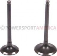 Intake_and_Exhaust_Valve_ _125cc_1